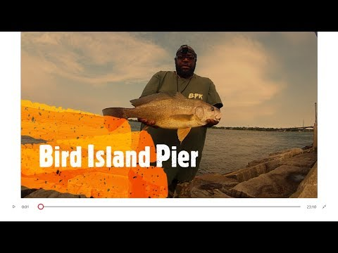 Fishing Bird Island Pier Buffalo New York