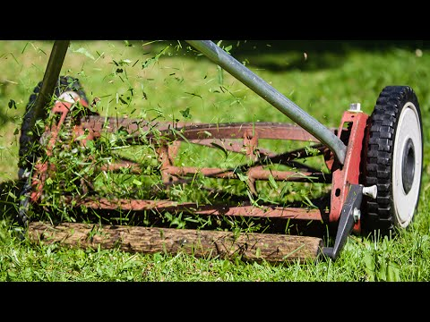 'Cutting The Grass' - Israel