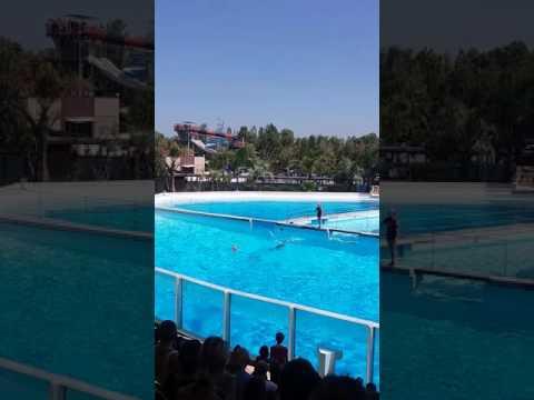 Italia zoo marina