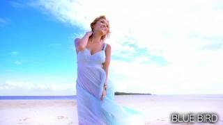 "Ayumi Hamasaki -Blue Bird ""Harderground remix"""