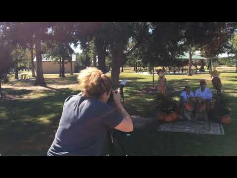 Kat MacK Photography a day at golden beginnings rescue