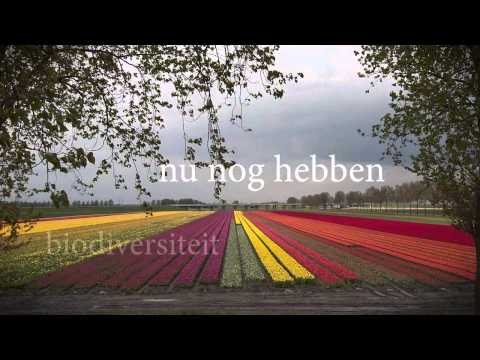 Scenario's Randloos Duurzaam Haarlemmermeer