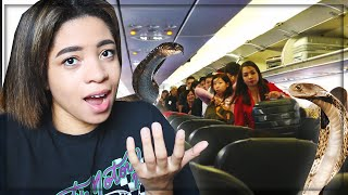 Snakes Got Loose On The Plane (storytime)