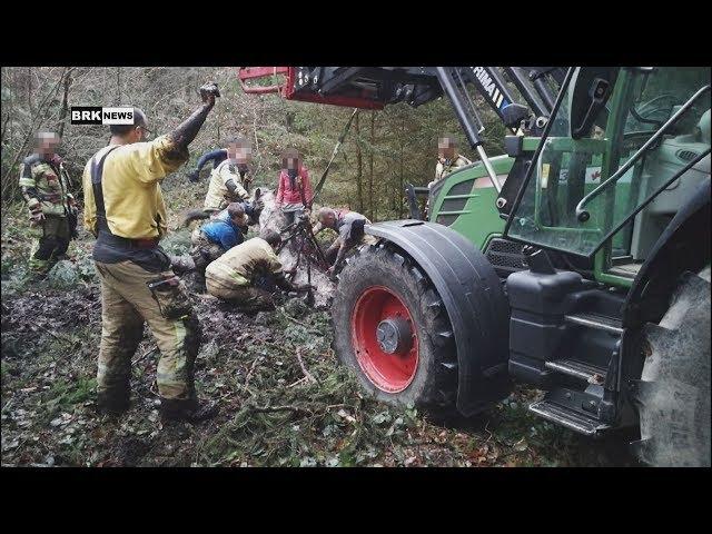 Jona SG: Dramatische Rettung mitten im Wald – Pferd versinkt in einem Schlammloch