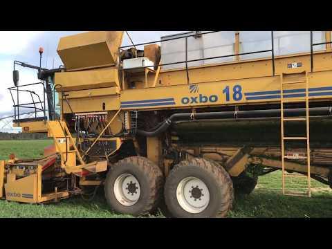 Pea Harvest 2017 In 4K