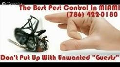 Miami FL Pest Control | 1-786-422-0180 | Miami FL Exterminators