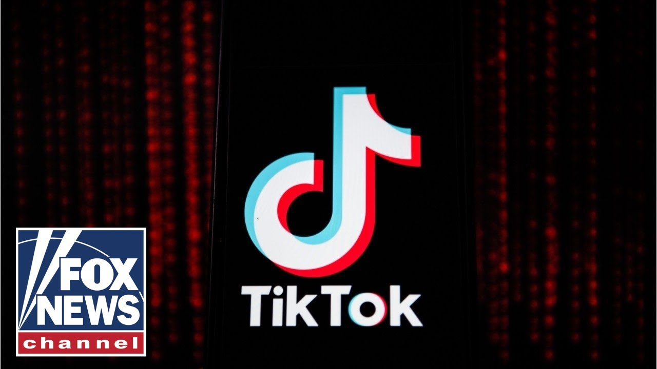 TikTok to sue Trump administration over ban: Report