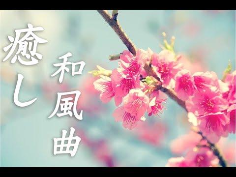 【Sakura BGM】Relaxing Japanese Music