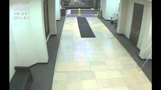 Security Footage of Dog Who Traveled 20 Blocks to Find Owner at Hospital thumbnail