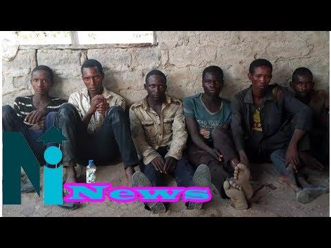 Troops arrests 6 herdsmen destroying farmlands (photos)