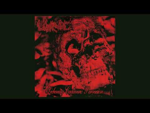 "LARVAE ""SICKENING CADAVERIC PERVERSION"" (Full EP 2020)"