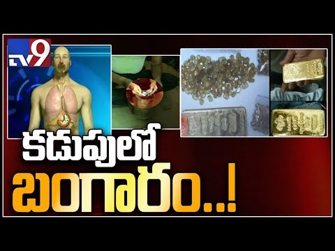 Task force : Passengers caught at Hyderabad airport for smuggling gold in paste form - TV9
