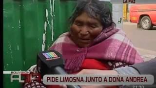 Sabina: La Gata Más Querida De La Paz
