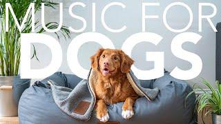 EXTRA LONG Dog Music! Guaranteed to Help Your Dog Relax & Sleep!