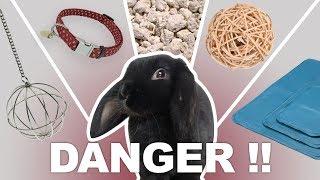5 choses dangereuses pour les lapins à ne sourtout pas acheter !