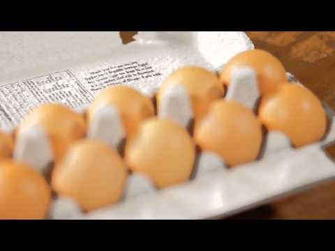 Healthy Fortified Eggs : Greek Gourmet