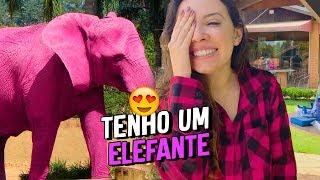 TEM UM ELEFANTE ROSA NA CHÁCARA !!!