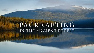 Packrafting In The Ancient Forests Of Jämtland