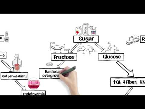 The Problem with Vegetable Oils, Sugar, and Refined Grains