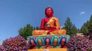 Gambar cover Buddha Amitabha Pure Land