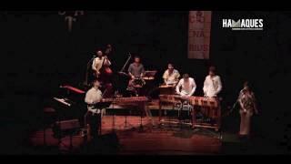 Sones de Marimba - El Fandanguito  (Encuentro de Marimbas)