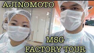 MSG Factory Tour Ajinomoto Kawasaki Plant