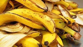 Você Nunca Mais Jogará Fora As Cascas de Banana Depois de Assistir a esse Vídeo