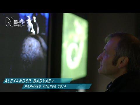 Alexander Badyaev tells the story behind his image | Wildlife Photographer of the Year