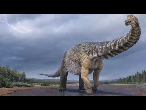 El dinosaurio que era tan largo como una cancha de baloncesto