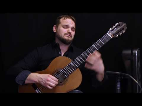 Matt Palmer plays Severn Suite by Holly Gwin - world premiere