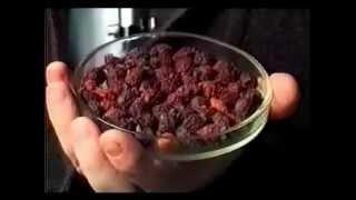 видео Как сушить боярышник