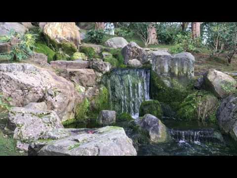 Japanese garden Holland Park London