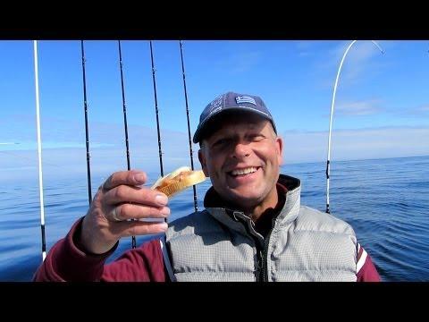 видео рыбалка на лосося