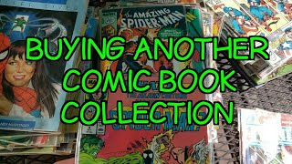A Common Issue While Buying a Comic Book Collection