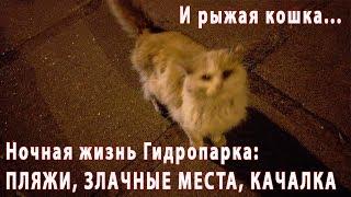 Ночная жизнь Гидропарка: пляжи, злачные места, качалка и рыжая кошка