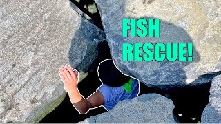 RESCUING an Ocean Fish from a ROCKBOUND CRYPT!!! (Beach Fishing Adventure)
