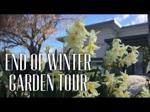Moat Cottage Garden Tour End of Winter 2018