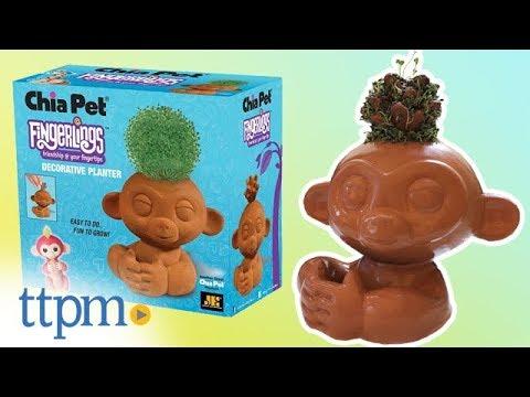 Fingerlings Chia Pet Decorative Planter From Joseph Enterprises Youtube