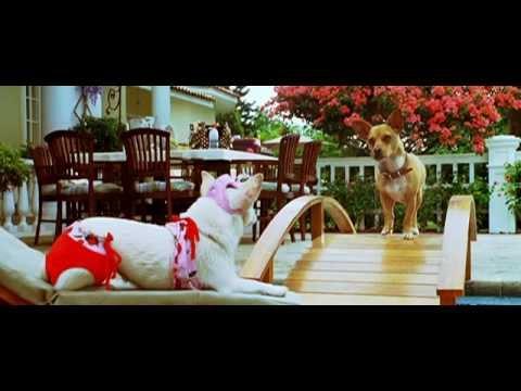 BEVERLY HILLS CHIHUAHUA - neuer Trailer