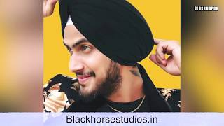 Vaibhav Kundra New Song Released II Sardar II Black Horse Star Talks