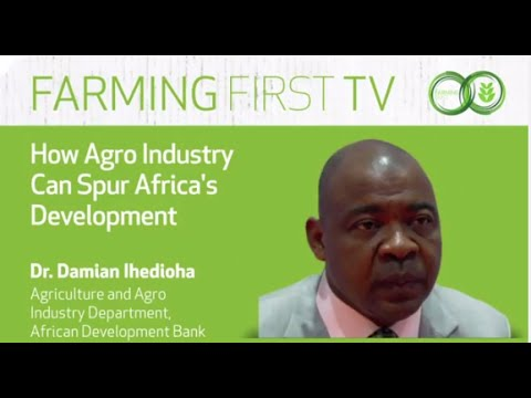 How Agro Industry Can Spur Africa's Development