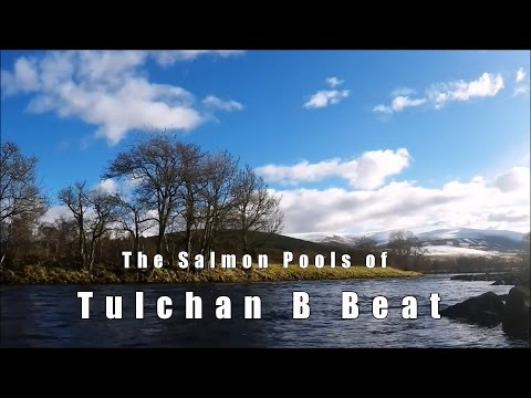 River Spey - Tulchan B Salmon Fishing