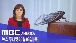 2021년 6월 3일(목) MBC AMERICA - 수백억 마리 매미떼 '부르드X' 동부 습격