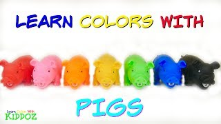 Learn Colors With PIGS
