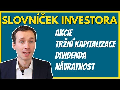 Co je to akcie, tržní kapitalizace, PE či dividenda? (Pro začátečníky)