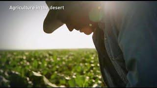 A true farming miracle in Israel's Arava desert