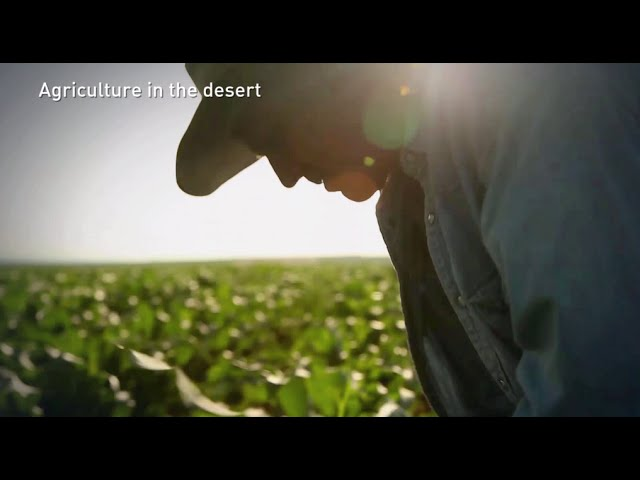WATCH: A Farming Miracle in the Israeli Desert | United with