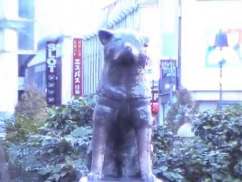 Dog Statue In Shibuya