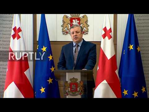 Georgia: Prime Minister quits amid mass protests