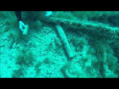 Djerba Diving